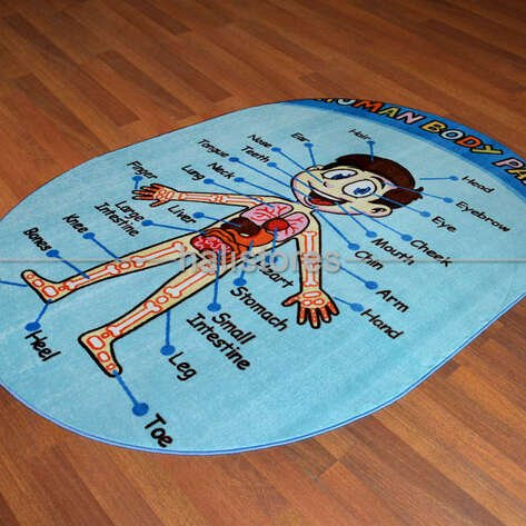 Confetti Oval Çocuk Halıları Anatomy